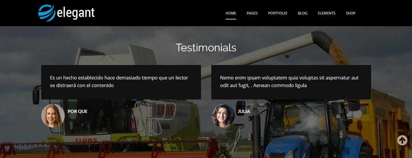 WordPress Theme