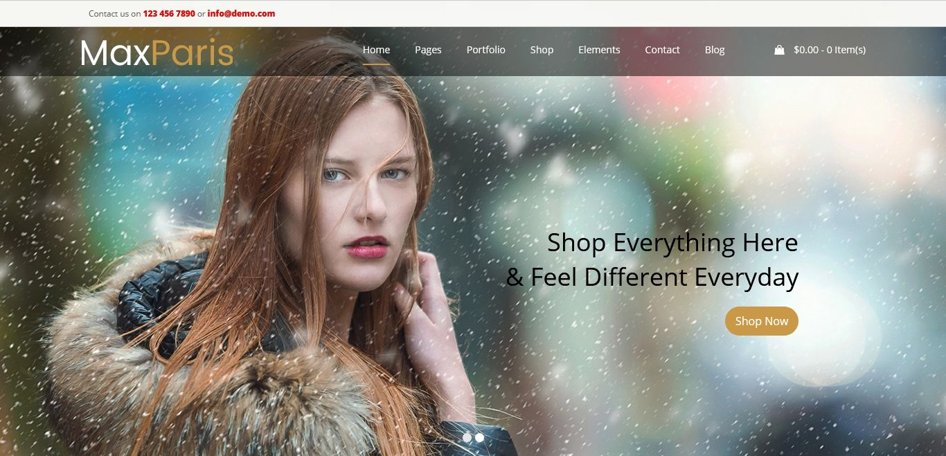 Max Fashion WordPress Theme