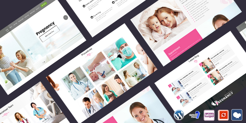 Pregnancy Care Responsive WordPress Theme Chicago